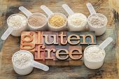 measuring scoops of gluten free flours (almond, coconut, teff, flaxseed meal, whole rice, brown rice