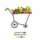 Garden cart with bright fruits and berries.
