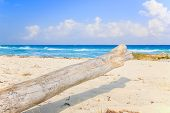 pic of playa del carmen  - Carribean sea scenery in Playacar ( Playa Del Carmen ) Mexico