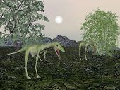 Compsognathus dinosaur mum and baby- 3D render