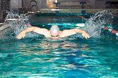 Man Swims In The Swim Pool Butterfly Stroke