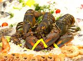 foto of norway lobster  - Lobsters prawns and shrimp crustaceans on crushed ice - JPG