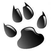 pic of paw-print  - Illustration animals paws print on a white background - JPG