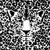 picture of leopard  - Seamless animal fur pattern vector - JPG