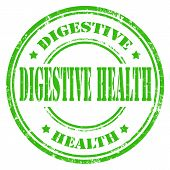 pic of digestion  - Grunge rubber stamp with text Digestive Health - JPG