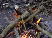 A log camp fire