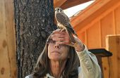 A Kestrel And Trainer At Bearizona, Williams, Arizona