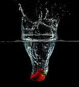 Strawberry Splashdown