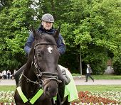 Polish Policeman On Horseback