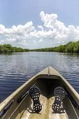 Kayaking In Everglades National Park, Usa