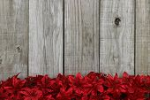 Red Christmas garland flower border against rustic antique wooden background