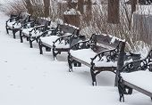 Benches in the winter city park