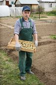 Man Going To Plant Potatoes
