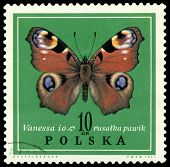 Vintage  Postage Stamp. Butterfly Vanessa.