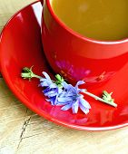Chicory drink in red cup and flower on board