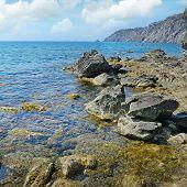 Rock in the ocean