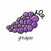 Doodle grape. Hand-drawn object isolated on white background. Easy paste to any background