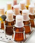 pic of thermos  - Close up amber color flasks on thermo scientific orbital shaker in laboratory - JPG