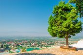 Lush Trees On The Hill Pamukkale And City Views