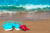 Beautiful Slate And Red Starfish On The Sea