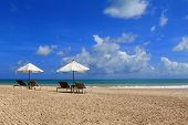 Sunbathing Beds with White Umbrella along the tropical beach