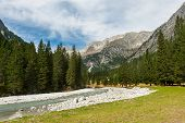 picture of genova  - Mountain river in Genova valley Natural Park Adamello Brenta Italy - JPG