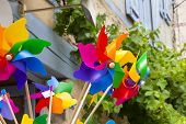 stock photo of wind wheel  - Brightly colored wind toys against an old wall ang grape vine - JPG