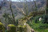 picture of fortified wall  - Ruins of a fortified wall in Sintra - JPG