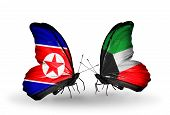 foto of kuwait  - Two butterflies with flags on wings as symbol of relations North Korea and Kuwait - JPG