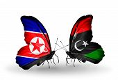 picture of libya  - Two butterflies with flags on wings as symbol of relations North Korea and Libya - JPG