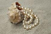 Snail With Pearls