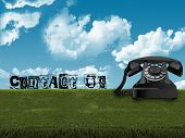Old Telephone In Grass