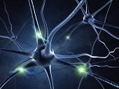 stock photo of nucleus  - active nerve cell in human neural system - JPG