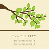 Rama de árbol. Ilustración del vector.