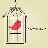 Постер, плакат: Симпатичные птица в Бердкедж