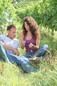 Couple of winegrowers eating grapes in vineyard
