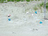 Thrash On Beach