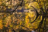 Fall Trees At A Lake Edge Of Yedigoller National Park, Turkey. Fall Trees At A Lake Edge Of Yedigoll poster