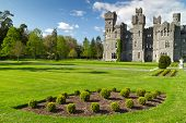 Постер, плакат: Эшфорд замок и сады Co Майо Ирландия
