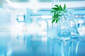 Green Leave In Biotechnology Science Research Laboratory With Flask Beaker Cylinder And Water In Blu poster