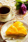 pic of saucer magnolia  - Peach tart - JPG