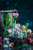 Flower Still Life. Roses And Leaves In Vintage Glass Bottles Close-up. Botany And Perfume Header On  poster