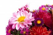 picture of gift basket  - Picture of the basket of flowers on a white background - JPG