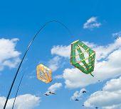 Kite Windsocks