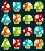 Mini Magic Mushrooms