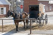 image of mennonite  - Amish horse and buggy hitched to a post in a modern community - JPG