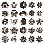 Vintage flower buds vector design elements isolated on white background.