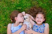 stock photo of baby twins  - twin sisters playing with chihuahua dog lying on backyard lawn - JPG
