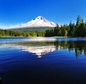 picture of trillium  - The beautiful Mount Hood reflection in Trillium Lake - JPG