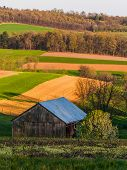 Rolling Hills, Farm Fields, And A Barn In Southern York County, Pennsylvania.